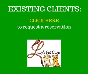 pet care reservation