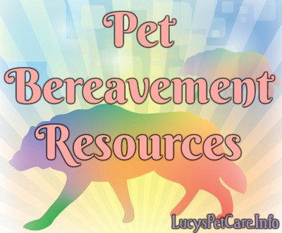 Pet Bereavement Pet Loss
