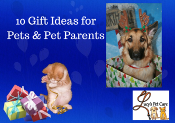gifts for dog owners archives